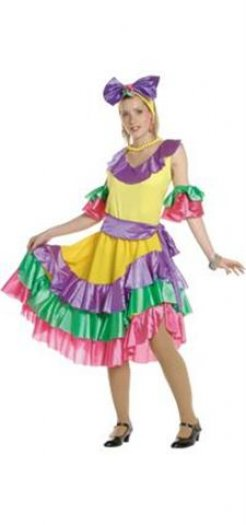 Disfraz de Caribeña 26 €