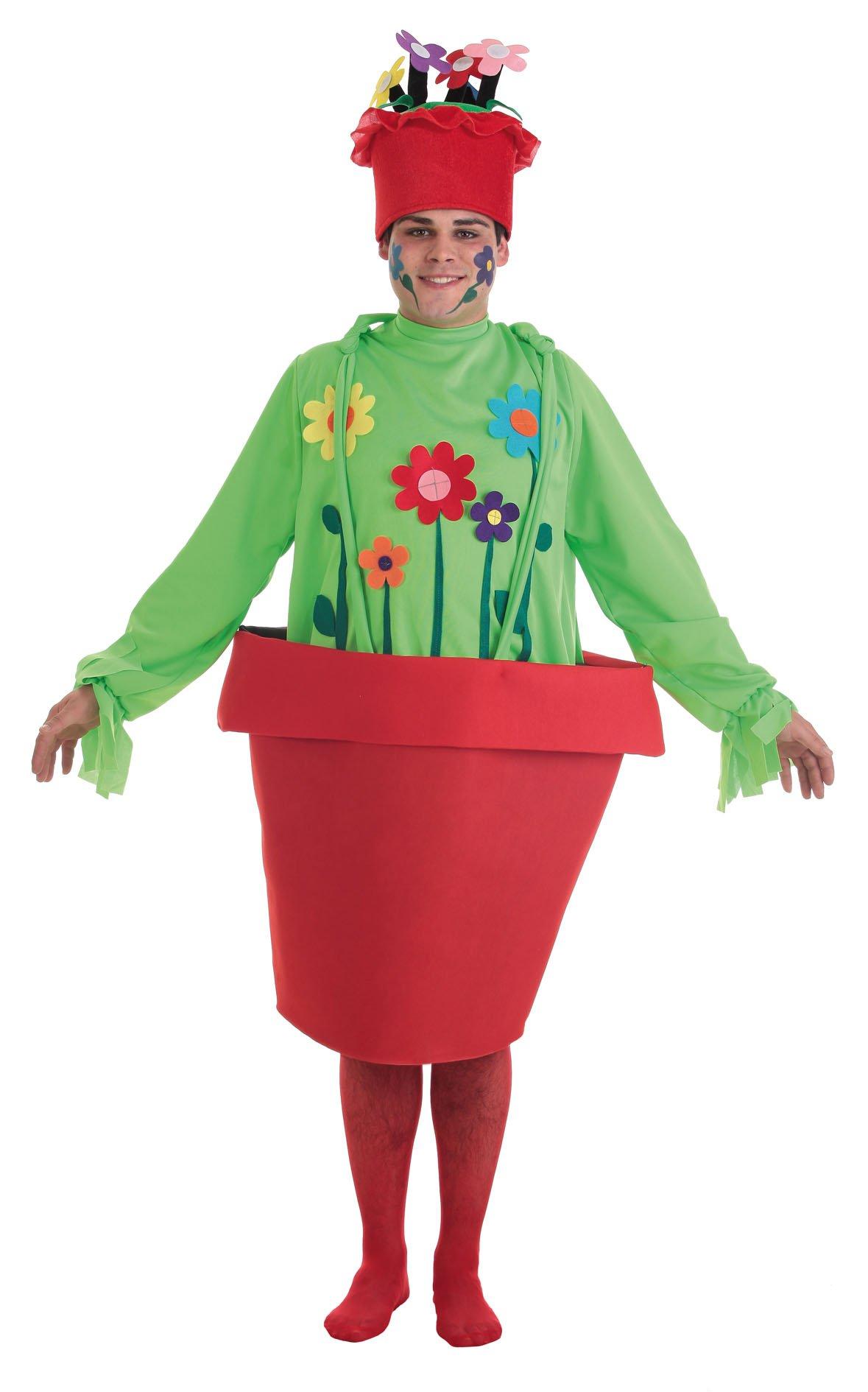 Disfraces de Frutas flores y hortalizas
