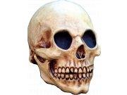 comprar Máscara Head Skull